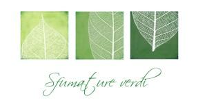 """Sfumature Verdi racconta delle """"Tinture di FIori"""""""